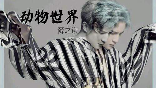 xuezhiqian_dongwushijie_guitar